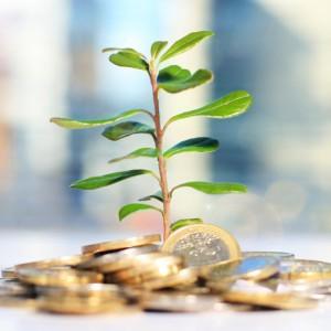 در چه دارایی سرمایهگذاری کنیم؟ | گروه مالی شریف | چطور سرمایهگذاری کنیم؟